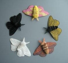 Embroidered moths- Rosy Maple Moth, fantasy moth in gold, Oakworm Moth, Peppered Moth (white), peppered Moth (black).