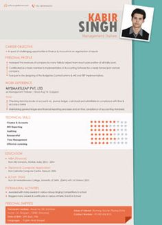 Professional Resume | Creative Resume Writing | Templates | CV