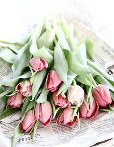 Ramos de novia de primavera: tulipanes