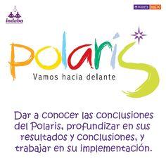 Polaris MSC