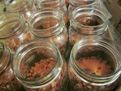 Okay, I am fascinated - this website has tons of recipes for dehydrated meals in jars. In case of an emergency, just add to boiling water! Would be great for camping, too.