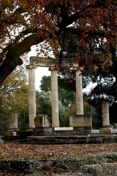 Autumn in Ancient Olympia