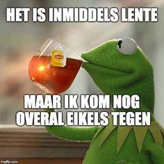 Good Jokes, Funny Jokes, Dutch Quotes, Kermit The Frog, Healthy Habits, Lol, Humor, Memes, Lipton