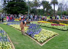 Carnival of Flowers - Queens Park Toowoomba