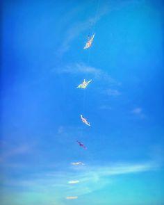 .: Fly.in.the.sky :. #car #mechanic #mechanical #model #fashion #metal #metalhead #heavymetal #sky #skyline #fantasy #photo #shot #italy #instagood #campania #italia #nature #followgram #followme #love #prisma #vscocam #light #awesome #vsco #vscoartist #vscoitaly #prisma - August 08 2017 at 11:30PM