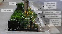 Bioswales, green infrastructure, department of environmental protection, water quality, stormwater runoff, stormwater, nyc sewer system, com...
