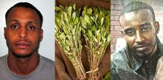 'Paranoid' man addicted to legal stimulant khat is jailed for 26 years for murdering former friend by using two knives to 'partially decapitate' him - Crime - UK - The Independent 2013