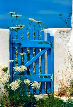 "Blue wooden gate and wild flowers! I picture the beach and ocean to be on the otherside of this gate. The sky and gate are the same color ""Love it"""