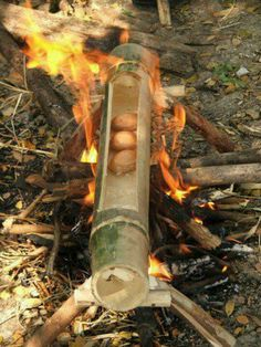 Bamboo to boil things or make rice. Mais