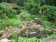 Linda & Terry's garden in Ontario--click through to see more photos of this garden.