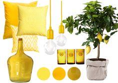De eerste zonnestralen zijn er.Dat betekent dat het voorjaar in aantocht is! In deze tijd kan je huis wel wat kleur gebruiken! Wij hebben de leukste items voor je op een rij gezet om je huis in he...