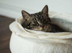 La cama del gato de fieltro flor de gato cama/gato gato por elevele