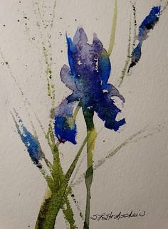 """Iris"" 10x7 watercolor, Sandra L Strohschein, SOLD, prints available through fine art America. #watercolorarts"