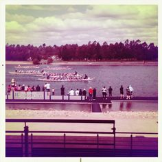 snap hipstamania : dragon boat regatta