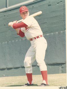A young Pete Rose Cincinnati Reds Baseball, Baseball Star, Sports Baseball, Baseball Players, Baseball Wall, Baseball Teams, Baseball Cards, Pete Rose, Cincinatti