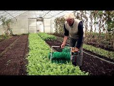 Six Best Tools for the market Garden — The Market Gardener