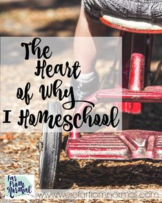 Some people truly wonder why anyone would homeschool and of the Many reasons, this one is the best :) Homeschool Blogs, Homeschooling, Toddler Preschool, Toddler Activities, School Fun, Special Needs Kids, Attachment Parenting, Kindergarten, 3d Printing, Activities For Children, Special Needs Children, Impression 3d, Preschool