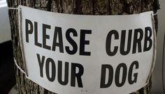"""Tenete a bada il cane"": così i cartelli raccontano New York City Yorkie, New York City, Nyc, Travel, Signs, Blog, Yorkies, Viajes, New York"