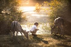 Flickr - Twitter Tuesday: The #Pets Selections - At One With Nature