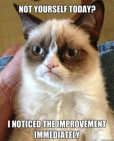 Grumpy cat - Not yourself today? I noticed the improvement immediately.