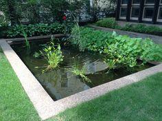 Like look Landscape, Plants, Scenery, Landscape Paintings, Flora, Plant, Corner Landscaping, Planting