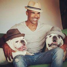 Famous Bulldogs and Famous Bulldog Owners, see them all: https://baggybulldogs.wordpress.com/2013/03/02/famous-bulldogs #buldog