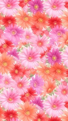 flowers girly iphone 6 wallpapers