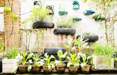 Um Jardim com Pneus é uma ótima opção para substituir vasos de barro ou mesmo