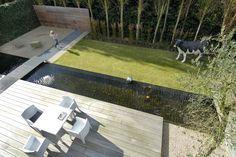 Edegem, by Filip Van Damme Minimal garden design aaaand the cow Contemporary Garden Design, Contemporary Landscape, Landscape Design, Garden Pool, Water Garden, Small Gardens, Outdoor Gardens, Small Yard Landscaping, Garden Images