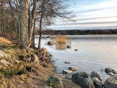 Beautiful solitude #iphoneart #iphonephotography #february2020 #finland #espoo #kallvikinranta #kurttila #saunaniemi #ourfinland #myuusimaa #saunalahti #saunalahdenranta #landscapephotography #lateafternoon #seashorephotography #finnishlandscape #trees #rocks #rockyshore #talvi #nosnow #beautifuldestinations #naturelovers #solitudeadventurer Rocky Shore, Iphone Photography, Solitude, Finland, Landscape Photography, Rocks, Trees, River, Adventure