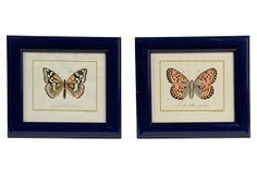 Framed Butterfly Prints, Set of 2 on OneKingsLane.com