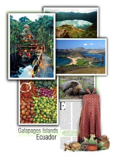 """Ecuador & the Galápagos Islands"" by anna-nemesis ❤ liked on Polyvore featuring art"