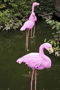 A couple weeks ago, we went to the Bronx Zoo. This is one awesome zoo! Flamingo Art, Pink Flamingos, Pretty Birds, Pretty In Pink, Lego Craft, Pink Bird, Custom Lego, Everything Pink, Lego Creations