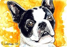 O Boston | Rachael Rossman: Watercolor Portraits of Man and Beast