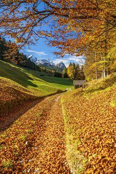 Autumn road (Bavaria, Germany) by Achim Thomae cr.