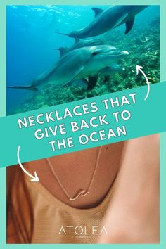 With each of your purchase from our ocean jewelries collection, you give back to the ocean. Be a part of this mission. Learn more about our advocacy at atoleajewelry.com