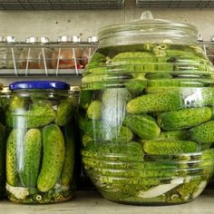 Make this refridgerator dill pickle recipe and in 3 days you can be enjoying your own dill pickles! Refrigerator Dill Pickles Recipe from Grandmothers Kitchen. Fresh pickles, not canned. Chutney, Homemade Pickles, Pickles Recipe, Refrigerator Pickles, Refridgerator Pickles Dill, Kitchen Refrigerator, Salsa Dulce, Canning Pickles, Grandmothers Kitchen