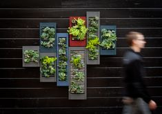 Repurposed shutters turned into vertical planters. Have the perfect spot for these.