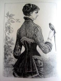 vest/corset