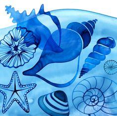 Shells by © Margaret Berg www.margaretbergart.com