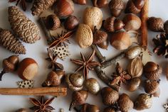 Mix real acorns pine cones with nuts cinnamon by ducklingpond