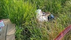 Abandonan ejecutado a orillas de la carretera Coatzacoalcos-Veracruz - http://www.esnoticiaveracruz.com/abandonan-ejecutado-a-orillas-de-la-carretera-coatzacoalcos-veracruz/
