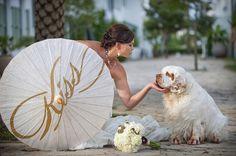 wedding dogs