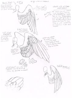 Wing Tutorial Part 2 by jackofalltrades0097.deviantart.com on @deviantART