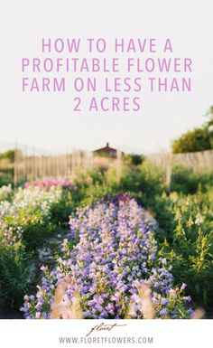 Build a thriving flower farm business on two acres or less. #beautifulflowersart