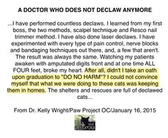 A DOCTOR WHO DOES NOT DECLAW ANYMORE