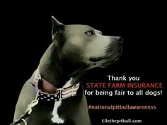 State Farm does not deny insurance to pit bull owners.