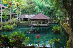 11 Things To Do Within 10 Hours in Bali! GO!!! in Asia, Bali, Indonesia | Travel | Hand Luggage Only