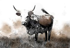 Available in a range of sizes. - Delivery is FREE to anywhere in South Africa! Watercolours, Watercolor Paintings, Cattle, Cnc, South Africa, Moose Art, Photos, Pictures, Delivery