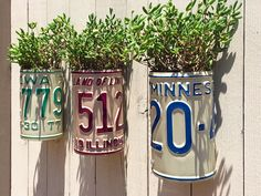 License Plate Planter, random US states. Vintage American license plates, vertical gardening, repurposed car parts, upcycled planters Vertical Vegetable Gardens, Vertical Succulent Gardens, Vertical Garden Design, Recycled Garden, Diy Garden, Shade Garden, Garden Art, Garden Crafts, License Plate Crafts